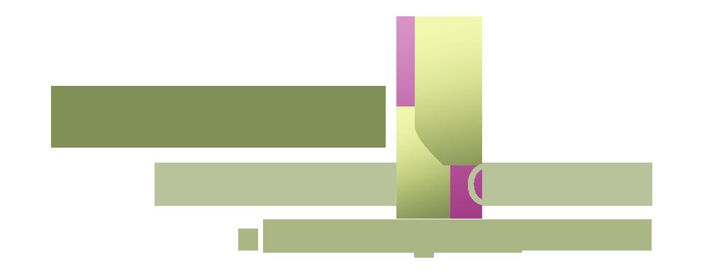 Selaras Holding